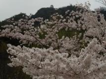 「岐阜城を望む」