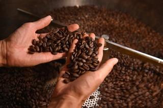 SHERPA COFFEE ROASTERS シェルパ コーヒー ロースター