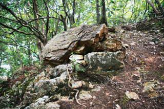 金華山中腹で新たな石垣を発見!